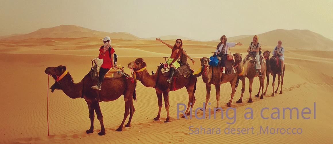 撒哈拉沙漠騎駱駝看日出