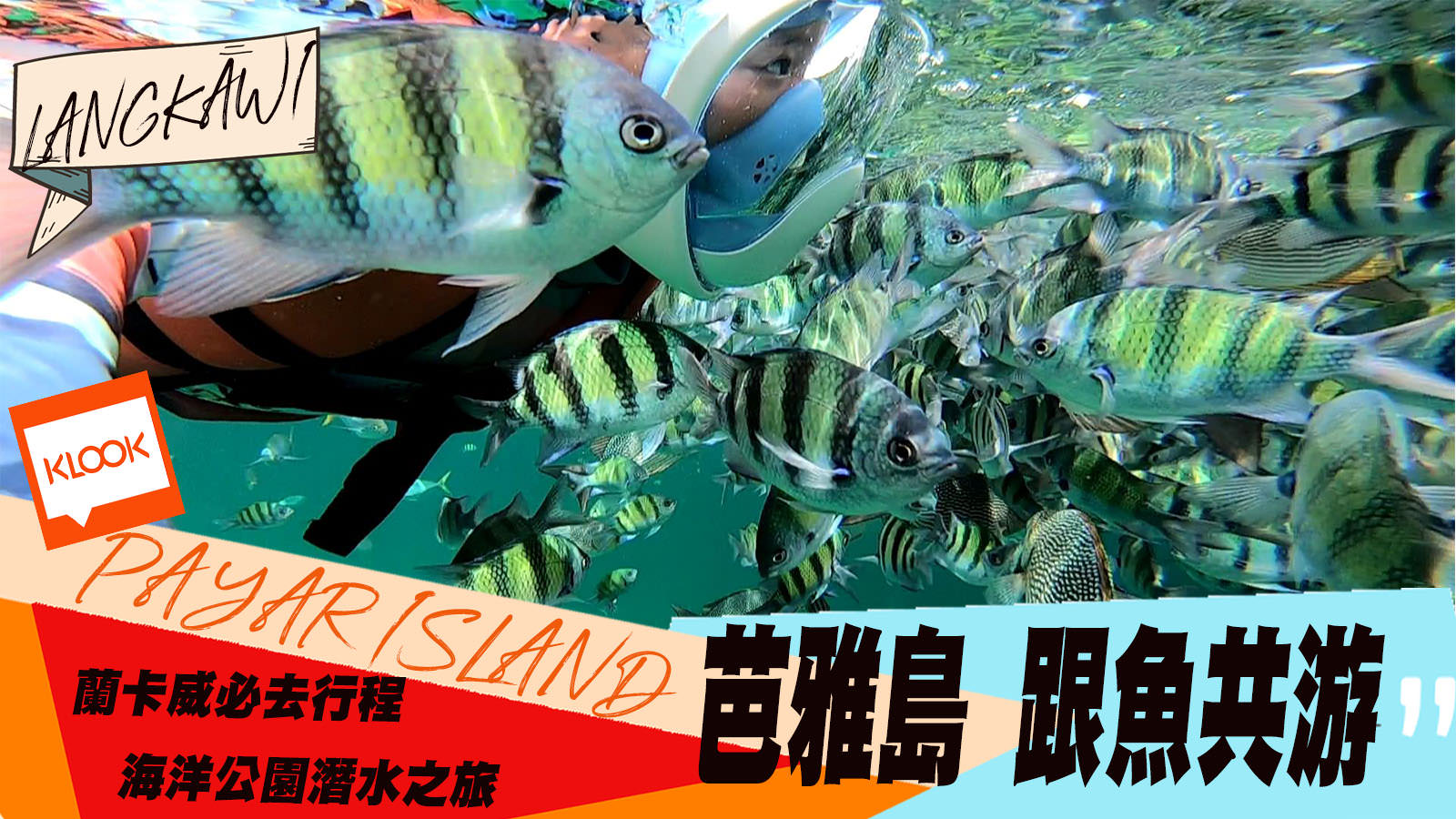 蘭卡威親子遊◾芭雅島Payar 海上浮淺挑戰你的魚群密集恐懼症  海灘浮淺跟海上平台價格行程比較