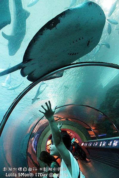 2012 9 30 澎湖水族館 (39)
