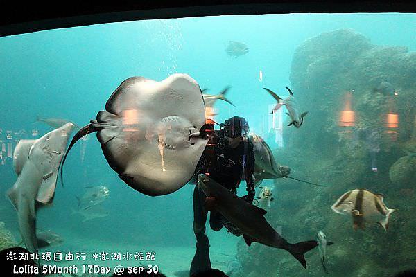 2012 9 30 澎湖水族館 (89)