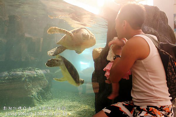 2012 9 30 澎湖水族館 (129)