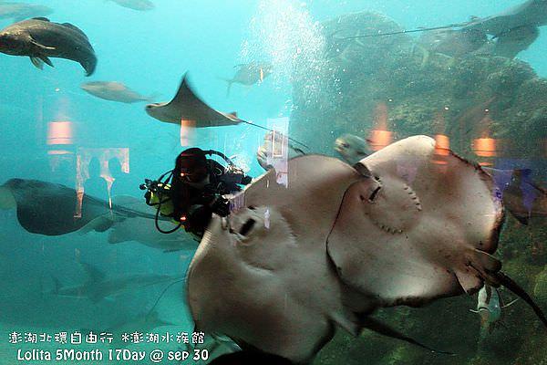 2012 9 30 澎湖水族館 (78)