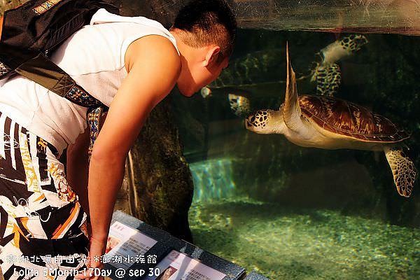 2012 9 30 澎湖水族館 (18)