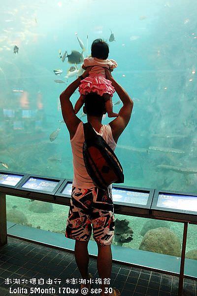 2012 9 30 澎湖水族館 (114)