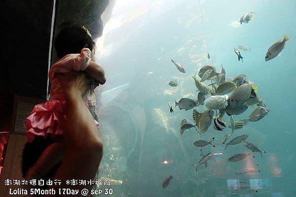 2012 9 30 澎湖水族館 (115)