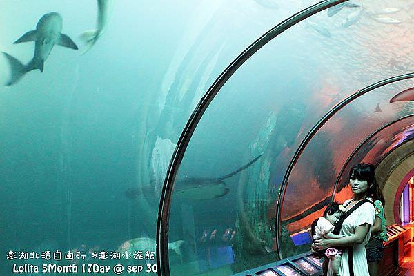 2012 9 30 澎湖水族館 (35)