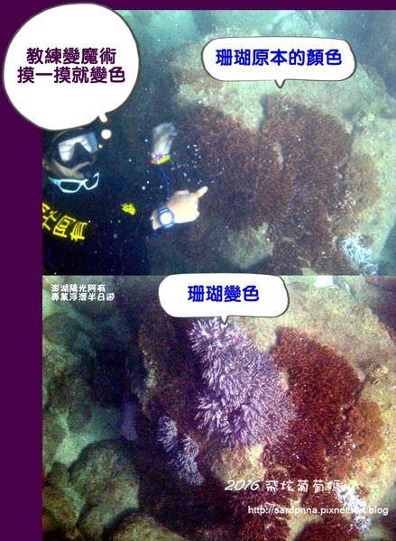 澎湖陽光阿有浮潛 SABAI B&B (119).jpg