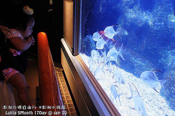 2012 9 30 澎湖水族館 (133)