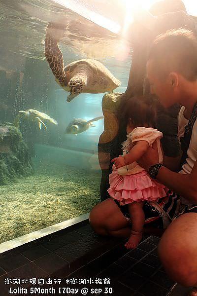 2012 9 30 澎湖水族館 (128)