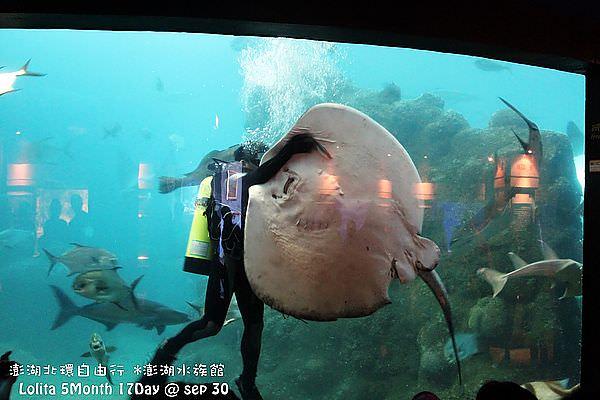2012 9 30 澎湖水族館 (76)