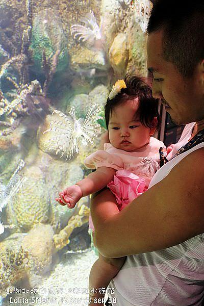 2012 9 30 澎湖水族館 (103)